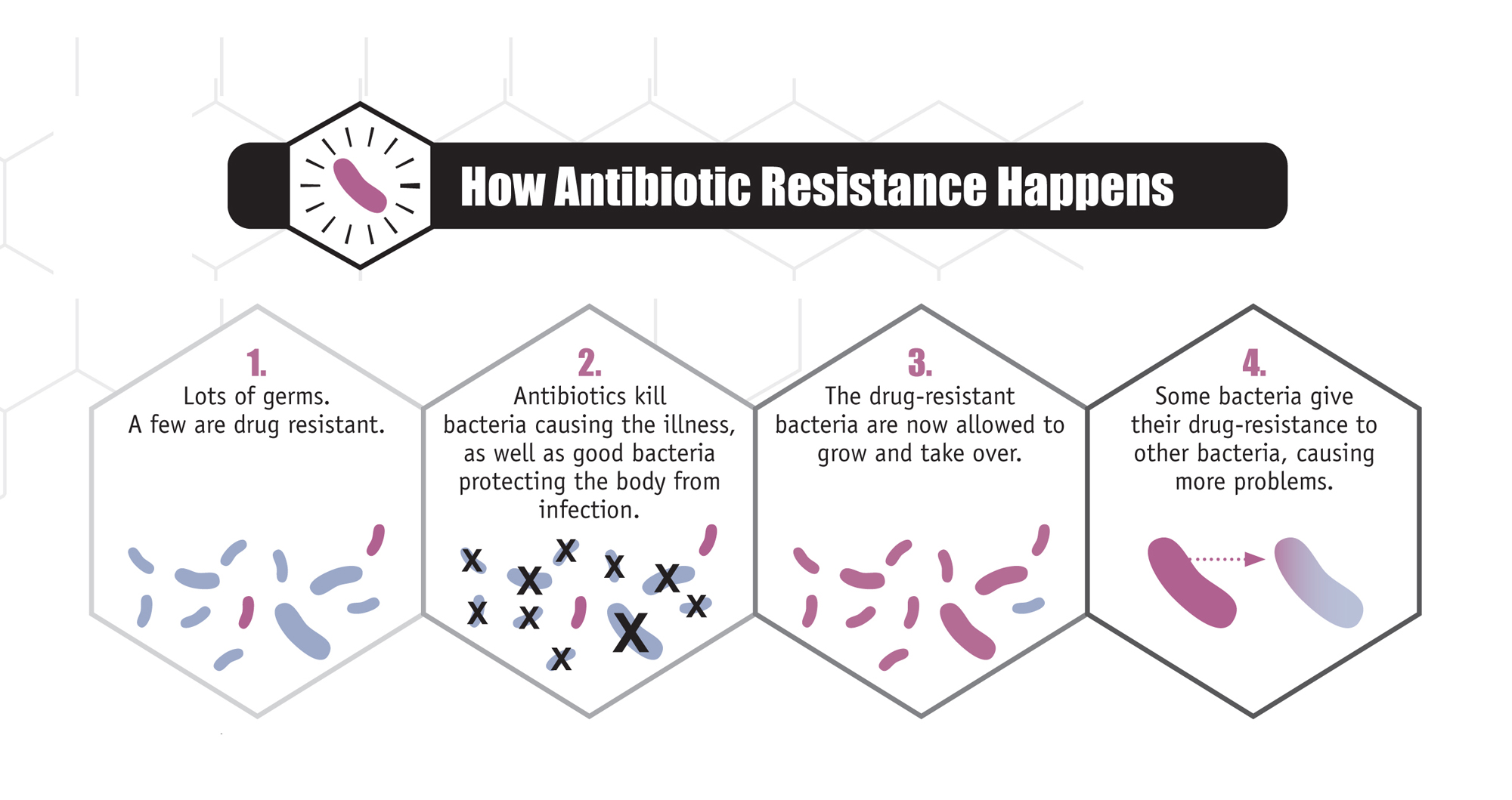 How do bacteria become resistant to antibiotics 7 questions with by kristy bleizeffer nov 14 2016 ccuart Images